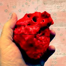 Print of 17 yo Female, Normal Heart